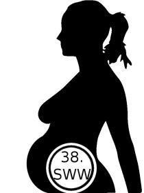 38. Schwangerschaftswoche