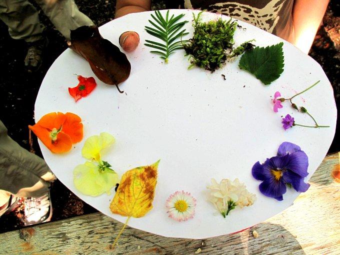 Draussen-Tipp: Farben der Natur