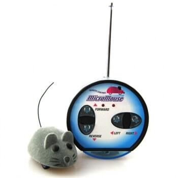 Eine (elektronische) Maus im Haus