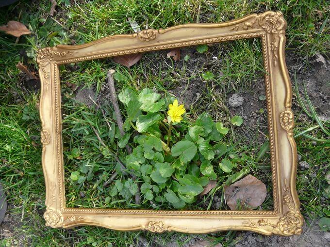 Draußen-Tipp: Auf der Suche nach dem Frühling